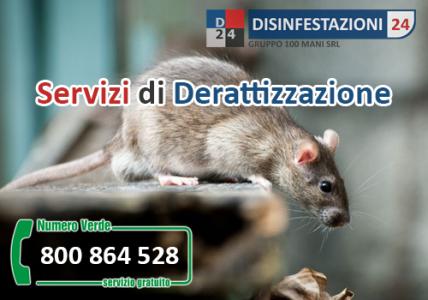 Derrattizzazione ( Topi e Ratti)