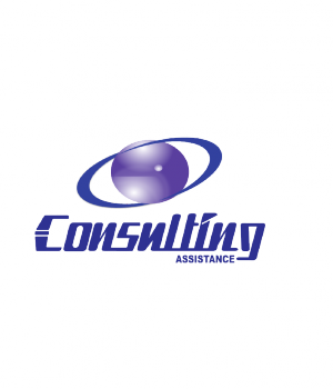 Consulting Assistance