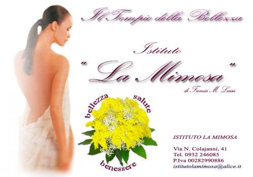 Istituto Di Bellezza La Mimosa