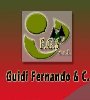 FGS srl