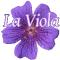 La Viola sas